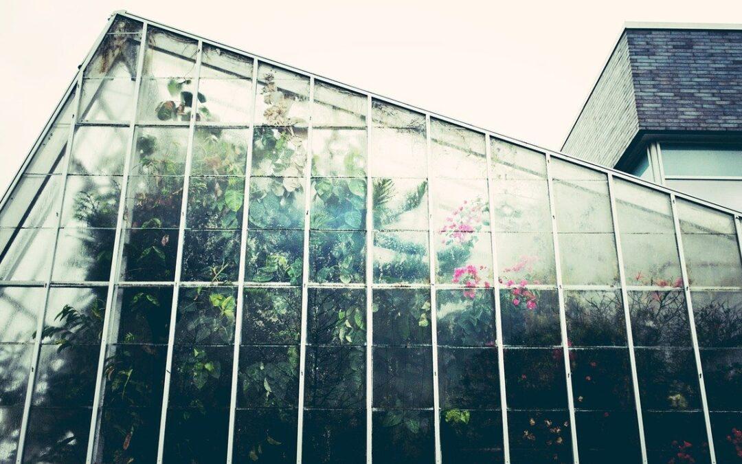 Serre de jardin : Les 13 avantages d'avoir une serre dans votre jardin