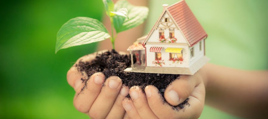 investissement-immobilier